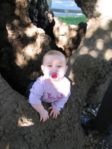 I took this picture so Eric would have one of Serenity climbing her first tree =)  7.5 Months