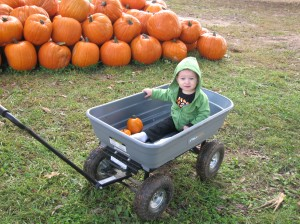 She loved the wagon!  Just like in Biscuit Visits the Pumpkin Patch =)