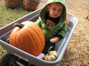 Serenity loved telling us which pumpkin was white and which were orange.