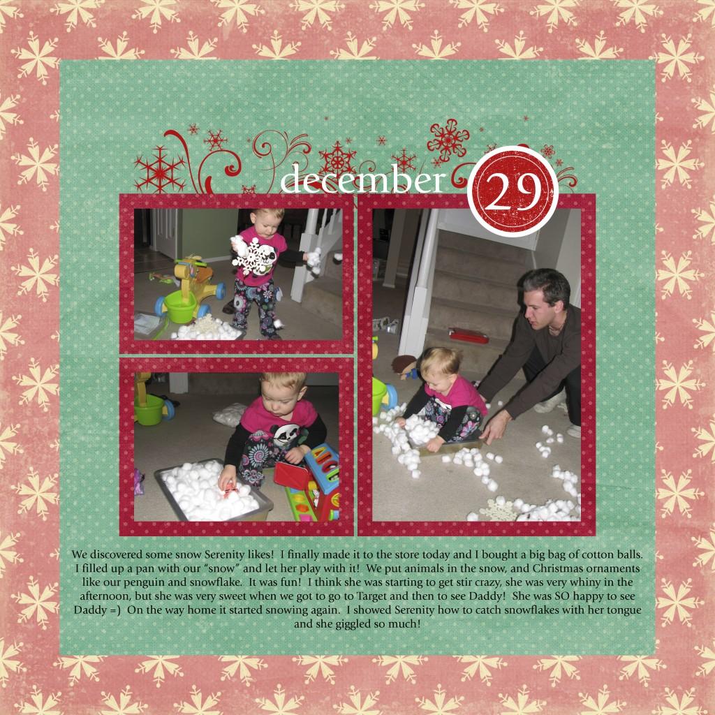 December 29th 2009 copy