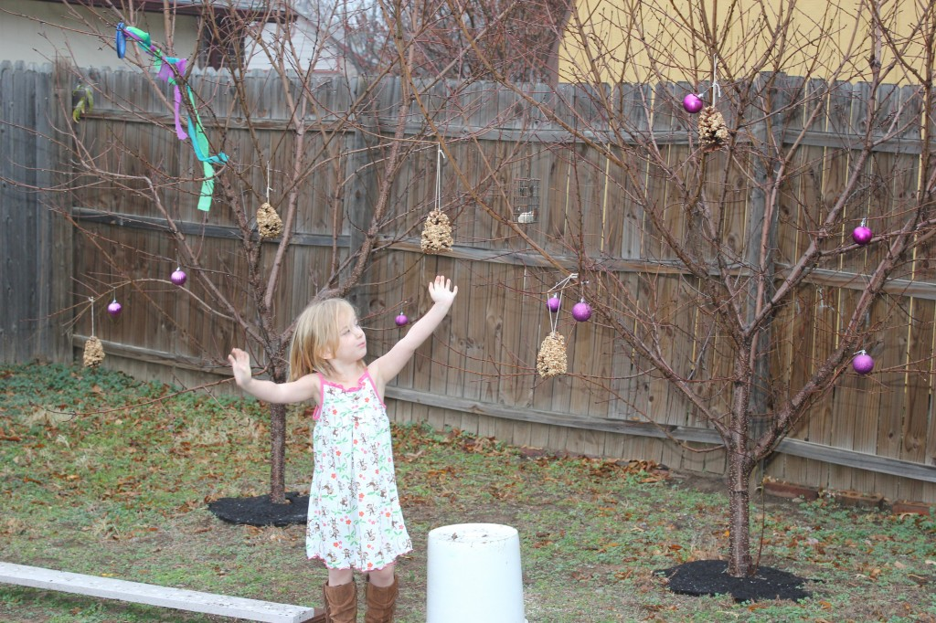 We made bird feeders with pine cones and birdseed.  Perfect for Nature Girl!