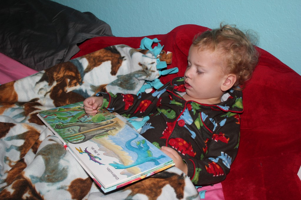 Asleep in his dino pajamas with a dino book =)