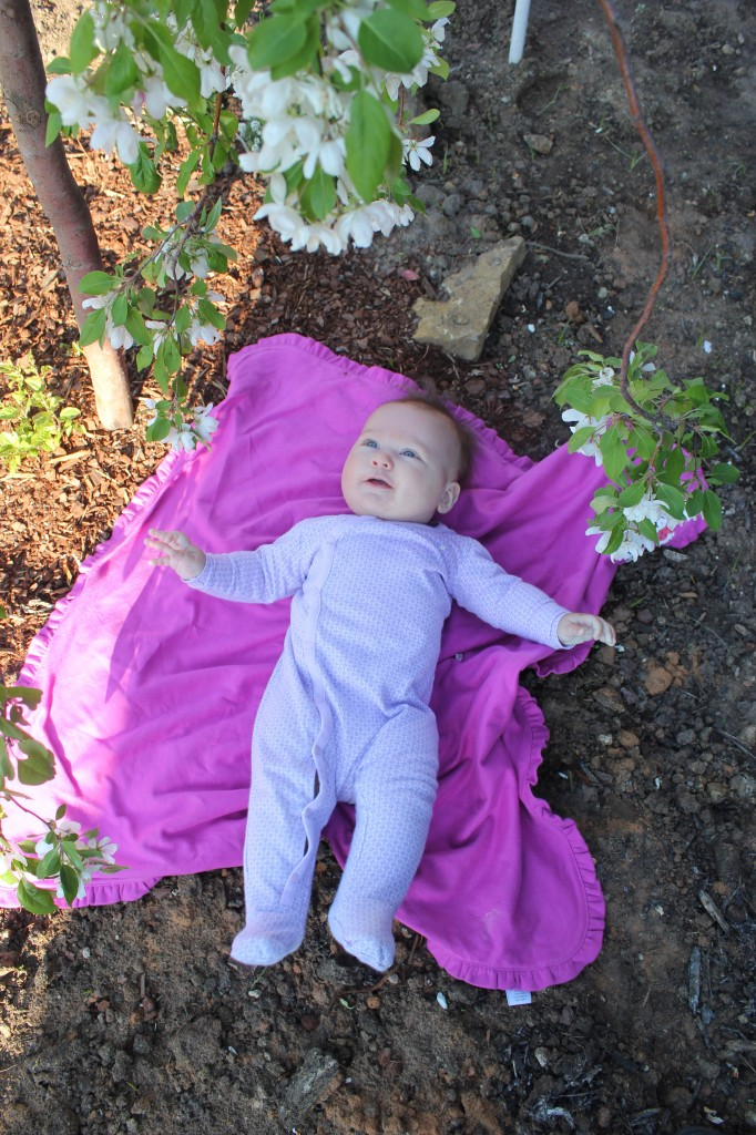 Maia under my new weeping crabapple tree =)