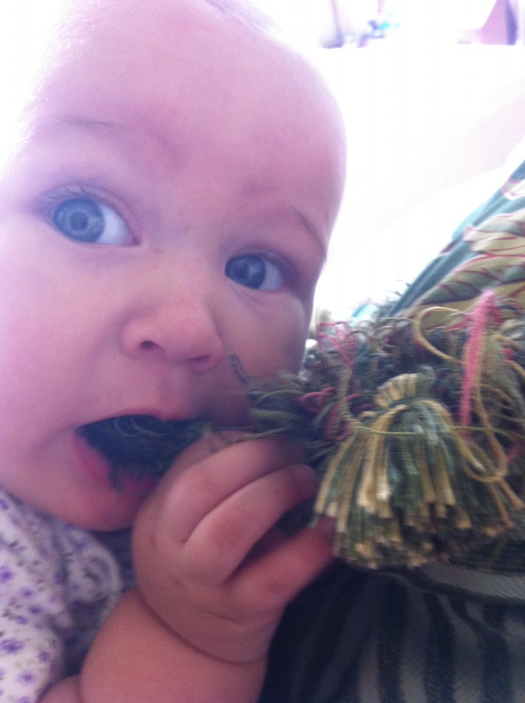 Eating tassels =)  Made me think of my niece Alli, who loved beautiful tassels. =)