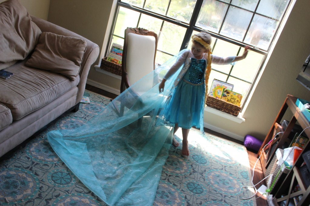 Elsa =)  Beautiful dress was a gift from Maggie, I made the cape out of some organza I got in Cali, and the braid was taken from a fleece project I made years ago.  It used to be a little baby bassinet, and it was already braided.