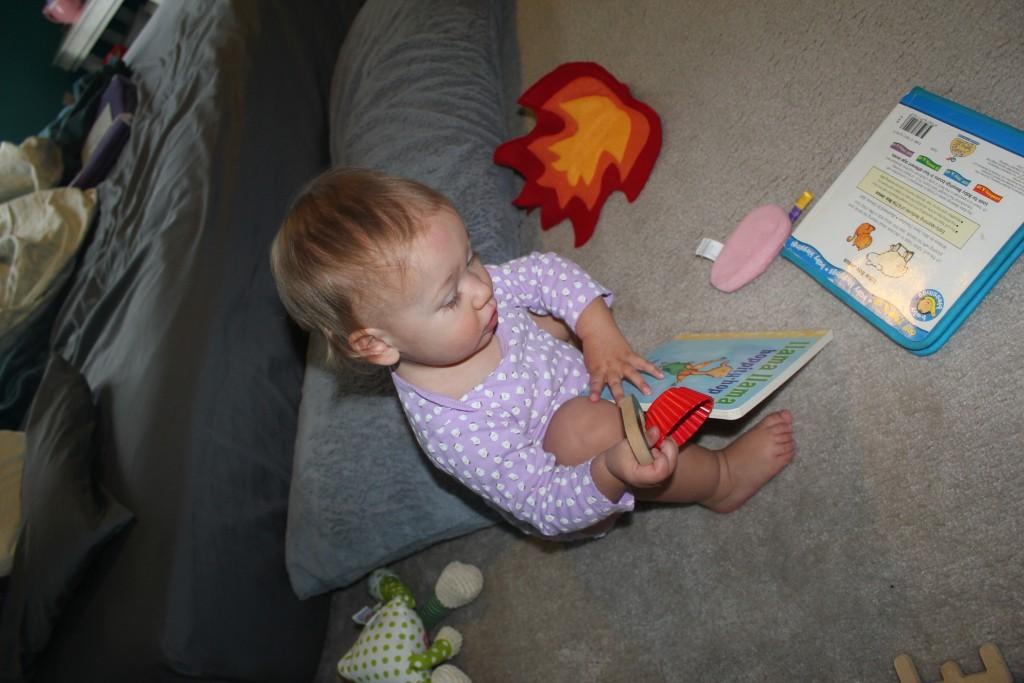 Hoppity Hop Book