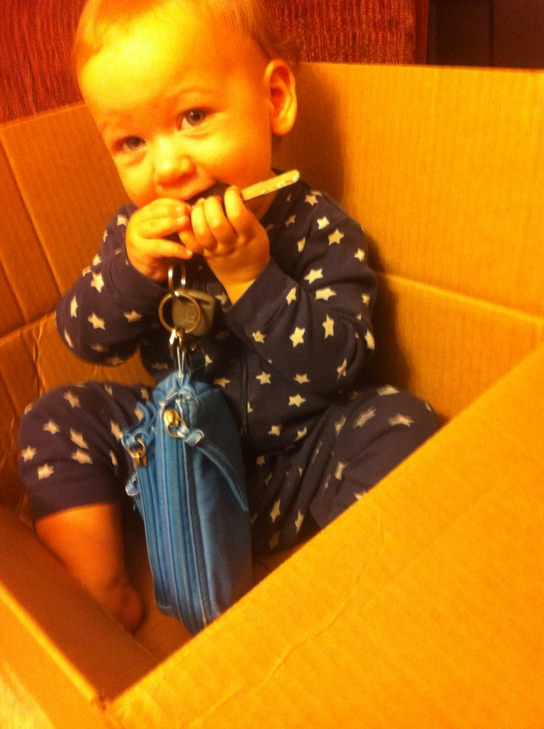 Maia, in a box, eating my keys.  Perfect =)