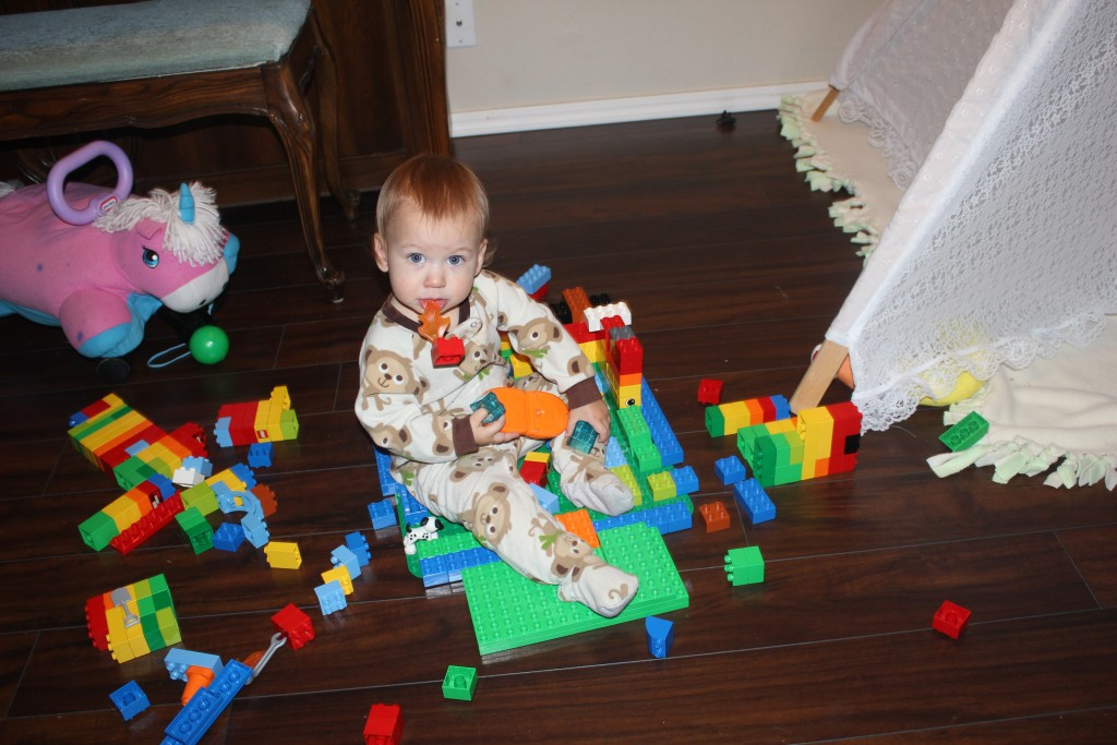 Legos are delicious.  And They are built specifically for Maia to sit in or destroy