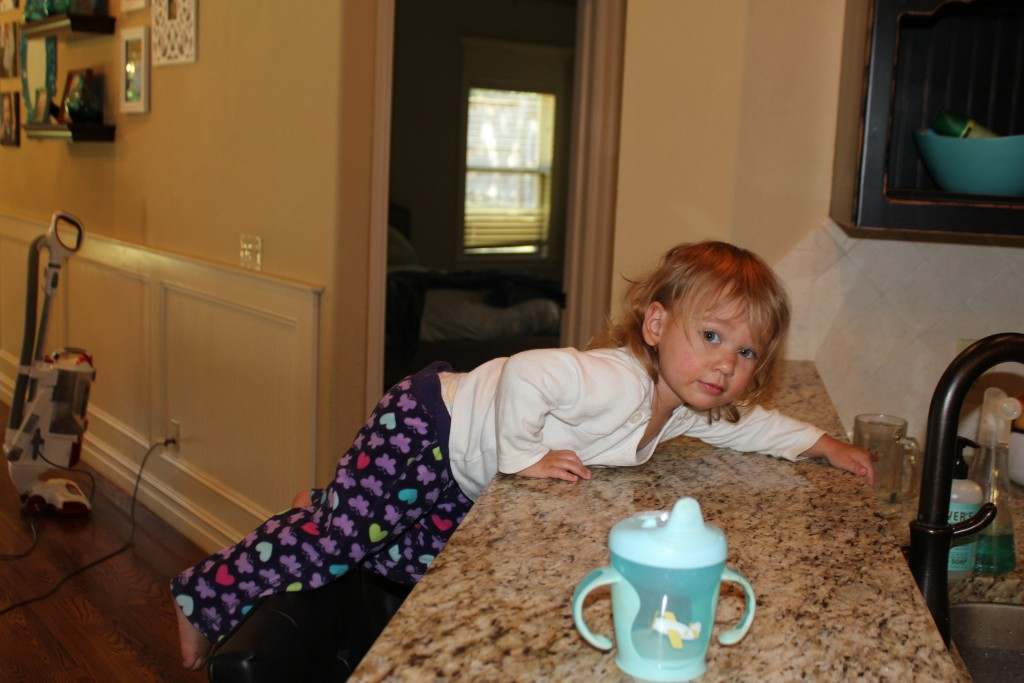 Climbing on the counters... one of Maia's favorite ways to get in trouble.