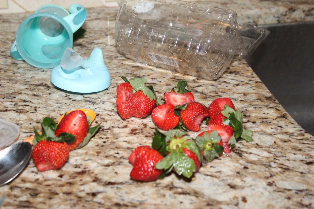 Still loves strawberries.  I left some out on the counter, and she pushed a bar stool around, climbed onto the counter, and took a bite out of each one.  All hers now =)